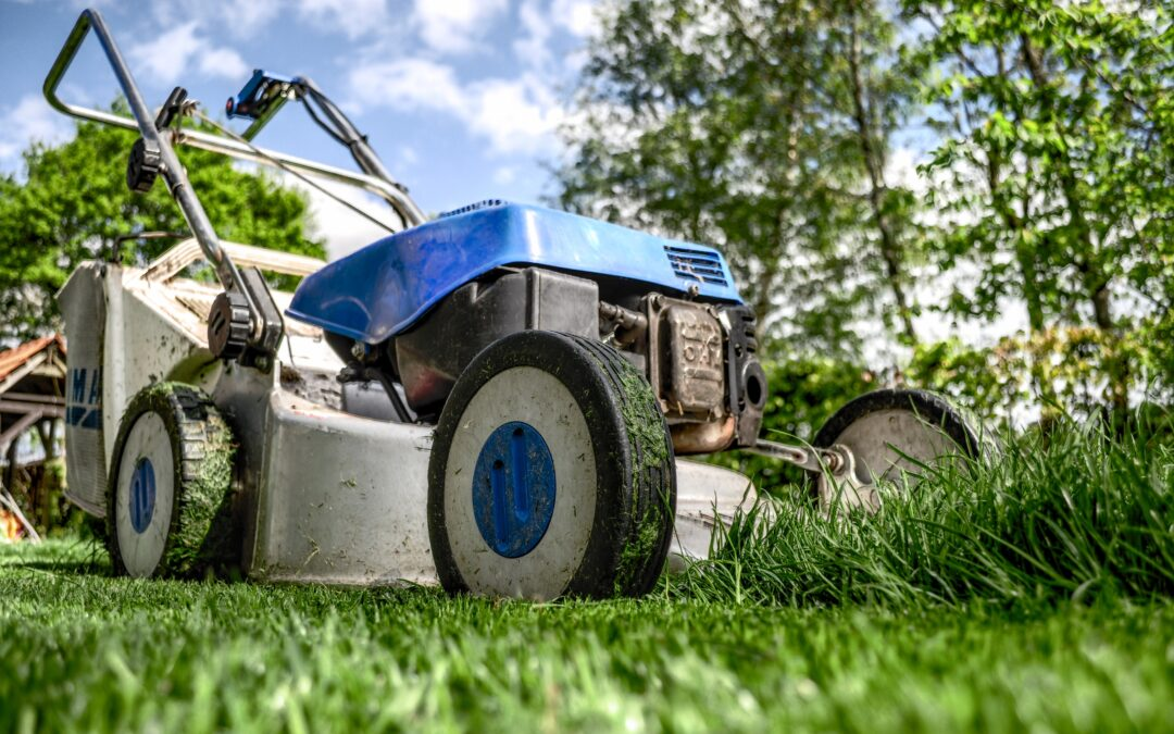 5 Tips for Easy Garden Maintenance in your Investment Property